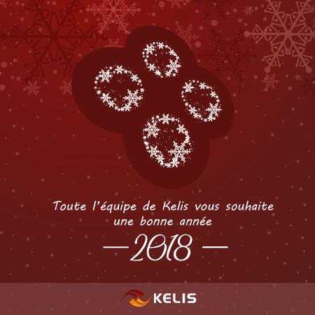 Toute l'équipe de Kelis vous souhaite une bonne année 2018